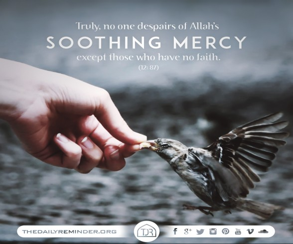 Truly, no one despairs of Allah's soothing mercy except those who have no faith. [12: 87]
